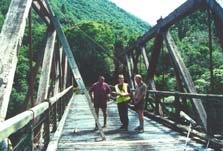Historic Manganuku Stream Bridge