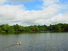 Hlawga National Park