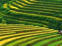 Ho Chi Minh Highlights