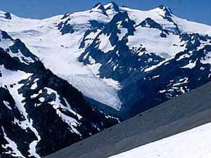 Hoh Glaciar