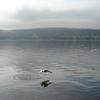 Honeoye Lake