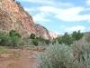 Hop Valley Trail - Zion - Utah - USA
