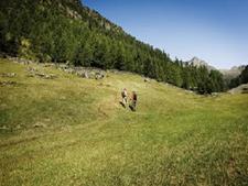 Horlachtal Valley-Tyrol Austria