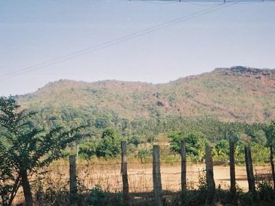 Fields In Horanadu