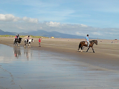 Horseback On Rossbeigh Beach In Ireland