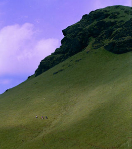 Horse Faced Peak At Kudremukh