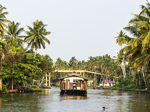 Best of Backwaters Fotos