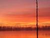 Hovey Lake