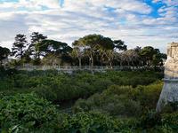 Howard Gardens