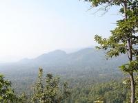Huai Kha Khaeng Santuario de Vida Silvestre
