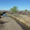 Huerfano River Colorado