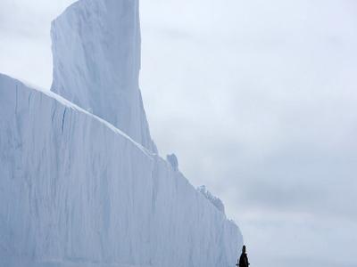 Huge Ittoqqortoormiit Glacier