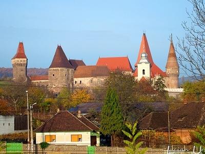 Hunedoara Castle View