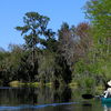 Hurrah Lake On The Alafia River