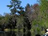 Hurrah Lake On The Alafia River