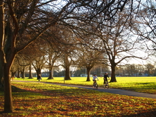 North Hagley Park