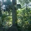Nienstedten Cemetery Friedhof Baur