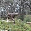 Hartman Prehistoric Garden