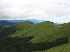 Hehuanshan In Summer