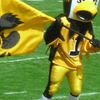 University Of Iowa Mascot, Herky