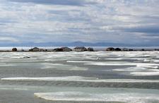 Herschel Island Yukon Pauline Cove