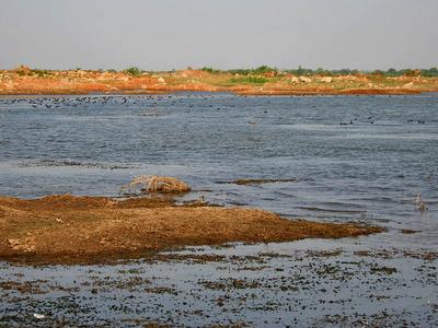 View Of Himayat Sagar Lake