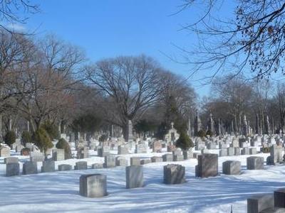 Holy Cross Cemetery Snow