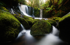 Horseshoe Falls In Mt Field National Park