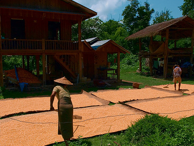 Hsipaw Local Houses