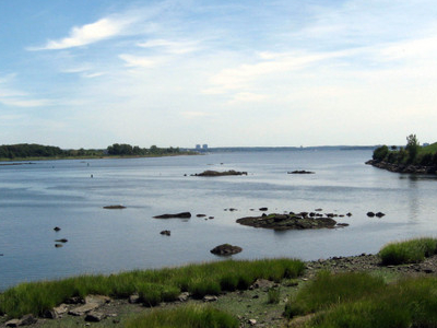 Mouth Of Hutchinson River In The Park