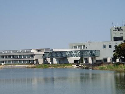 Hyogo University