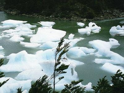 Icebergs By Serrano Glaciers