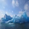 Icebergs Near Paamiut