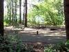 Ike Kinswa State Park