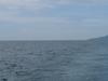 Ilha Dos  B  C 3  B Azios E  Ilha De  Vit  C 3  B 3ria