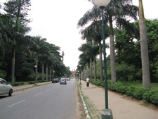 Road Across Cubbon Park - Bangalore