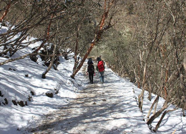 Pikey Peak Lower Everest Region Trek Photos