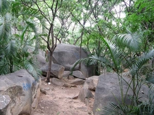 Bugle Rock Park Hang-Out - Bangalore