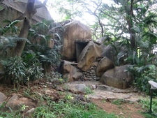 Bugle Rock Park Views - Bangalore