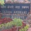 Tadoba-Andhari Tiger Reserve Plaque