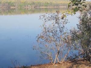 Lago Tadoba