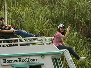 Orangutan Tour Deluxe BorneoEcoTour Fotos