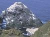 Inaccessible Island United Kingdom