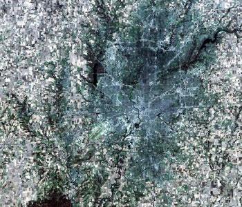 Indianapolis Landsat Image