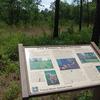 Information In Palmetto Trail.