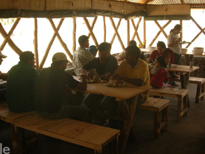 Campamentos en la selva Livinn y Retiro
