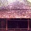 Thaniillam