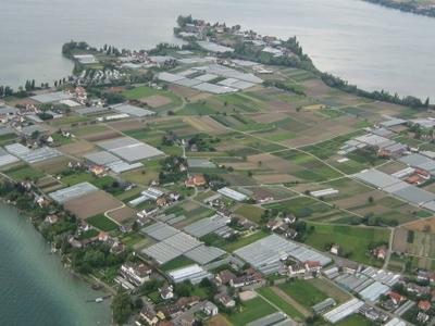 Insel Reichenau Martin Steiger