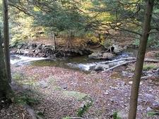 Inside Ricketts Glen State Park - Pennsylvania