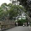 Inside Wellington Zoo NZ
